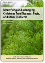 Identifying and Managing Christmas Tree Diseases, Pests, and Other Problems
