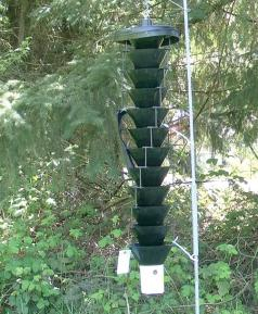 Lindgren funnel trap. (Photo courtesy of Oregon Department of Agriculture.)